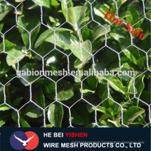 Direct factory chicken coop galvanized/PVC coated wire mesh