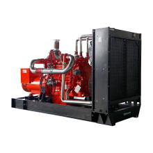 Biogas generator 300KW / 375KVA custom mute waste heat recovery time discount