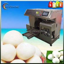 Automatic Round Steamed Bread Placing Plate Machine
