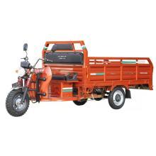 bicicleta elétrica de carga / triciclo de carga