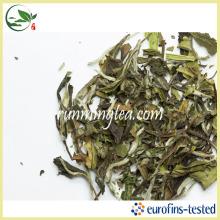 Белый чай с высоким содержанием сухого белого пиона