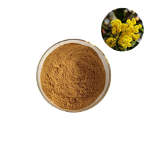 High Quality 100% Organic Acacia Senegal Acacia Seyal Powder