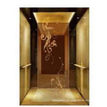 Fjzy-ascenseur (FJ8000-1) ascenseur passager Fjzy-202