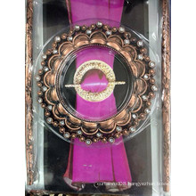 European style plastic decorative buckle clip