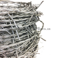 Made in China Barbed Wire Fence for Amazon Ebay Sale