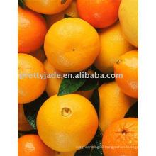 Fresh Valencia Orange