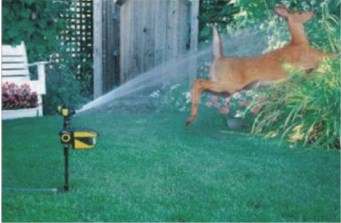 deer deterrent ELP015