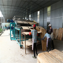 32m 2Deck Roller Type Veneer Dryers