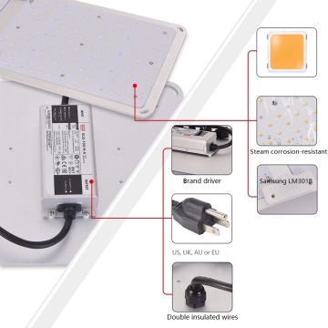 최고의 Quantum Board Grow Light 200W