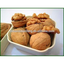 hot sale alibaba manufactory top quality natural walnut kernel