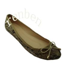 Sapatos de balé novas mulheres quentes