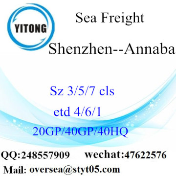 Shenzhen Port Sea Freight Shipping Para Annaba