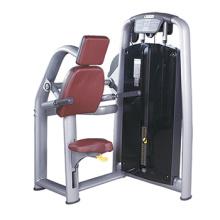 Trizeps-DIP-Maschinen-kommerzielle Turnhallen-Ausrüstung