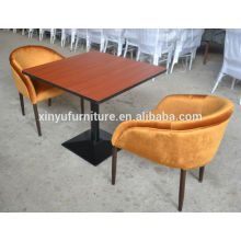 Leisure series dining table and chair set XYN209