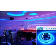 Bande LED bleue 14,4 W Ce et Rhos 60SMD3014