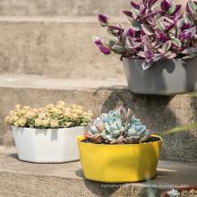 Wholesale large diameter plastic flower pots / indoor outdoor irregular plant pots with vent holes