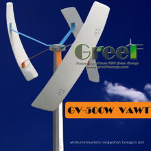 0.3kw Vertical off-Grid System Small Wind Turbine for Sales
