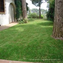 В природе landscaping искусственная дерновина травы