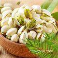 Productos agrícolas al por mayor nueces de pistacho de alta calidad