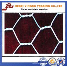 Hot Dipped Galvanized Hexagonal Wire Mesh (YB_53012)