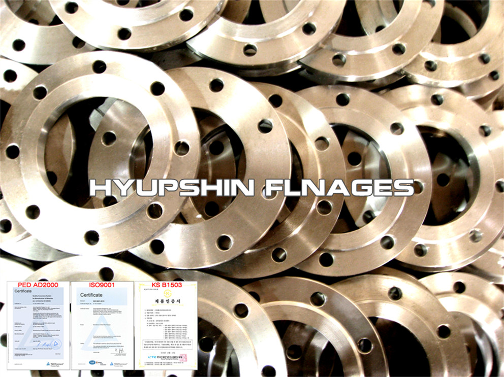Hyupshin Flanges Raised Face Flanges Pn16 Pn10