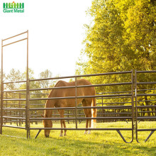 Duty Galvanized Heavy Used Livestock Horse Rail Fence