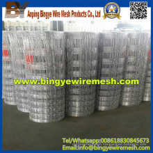 High Quality Hot Dipped Galvanized Field Fence Sheepfence