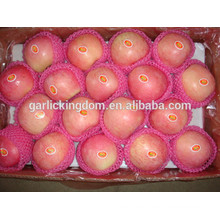 Apfelfrucht / bester Preisapfel / Großhandelspreis Apfelfrucht