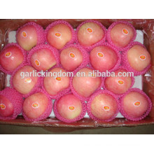 Fruta de manzana / Mejor precio manzana / Precio al por mayor manzana