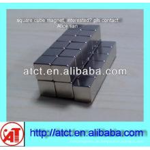 Quadermagnet n52