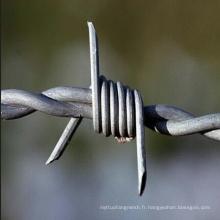 Fil de fer barbelé en sécurité pour clôture