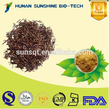 100% Natural uncaria gambir extract powder /cat 's claw extract / Alkaloids