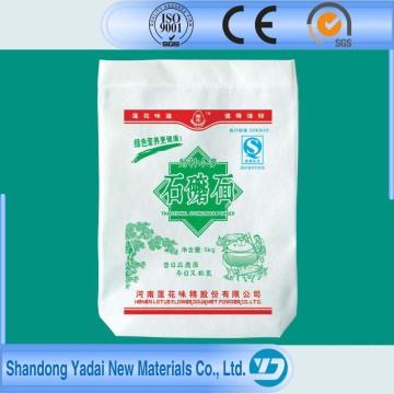 Hochwertige Verpackung gewebte Tasche für Lebensmittel
