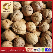 Extra Quality Papery Walnut in Shell Easy Cracked 32mm up