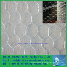 A venda quente Um engranzamento de fio hexagonal do sibilo / fio decorativo da galinha (china de alibaba)