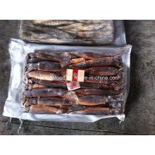 Mejor Calidad Illex Argentinus Congelado Illex Squid