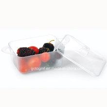 PP / PS Discos de plástico desechables platillo Rectangular Smooth Dish 4 Oz