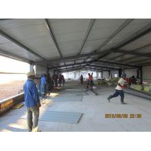 Автоматическая куриные оборудования и полуфабрикат мяса птицы сарай Строительство и монтаж