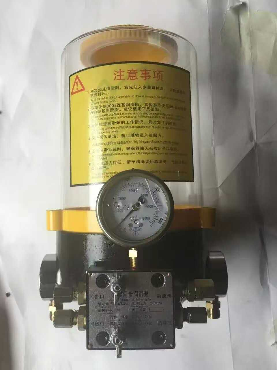 Auto-Manual Lubricating Pump