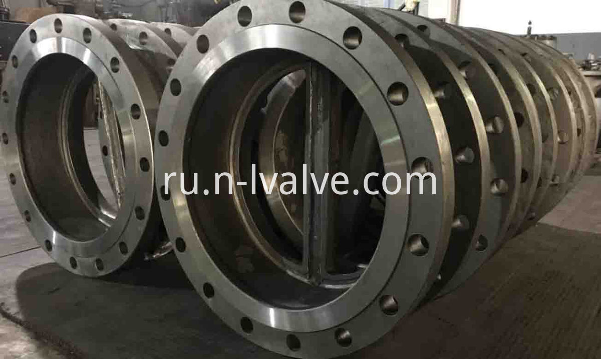 Dual Plate Swing Check Valve