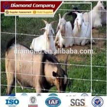 Barrière de bétail certifiée ISO, BV et SGS