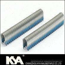 Galvanizado Pneumático Staples (BCS31P) como marceneiros