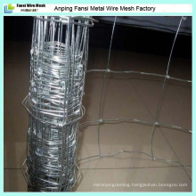 China Supplier Hot Dipped Galvanized Hinge Jointed Grassland/Field/Farm Fence