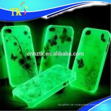 Glanzpigmente / im Dunkeln leuchten Pulver / Fotolumineszenzpulver für Kunsthandwerk und Geschenke usw.