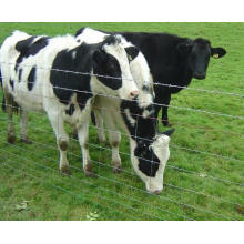 High Tensile Heavy Galvanized Coated Cattle Fence