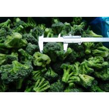 Nouveau brocoli congelé IQF Crop