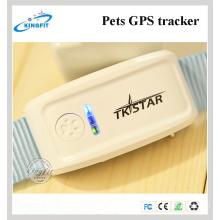 Fabrik neue Tk909 Haustiere GPS-Tracker