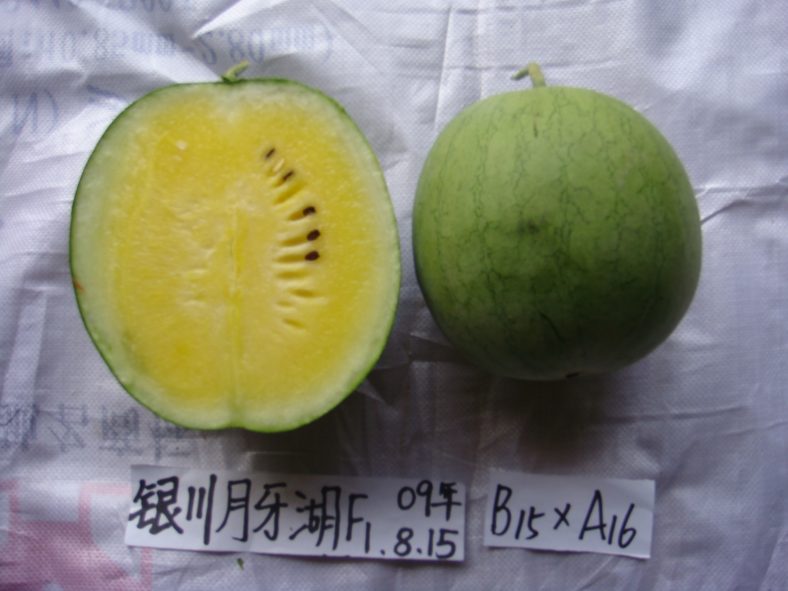 Hybrid Yellow Watermelon Seeds