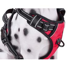 Kaatapet Brand High Quality Dog Harness