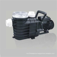 IP55 Standard Patened Internal Heat Swimming Pool Water Pump